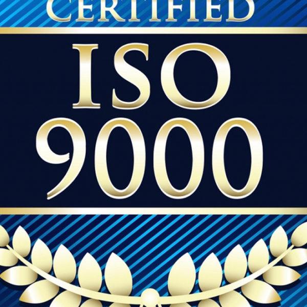 Implantación y Gestión de Sistemas de Calidad (ISO 9000/2015)